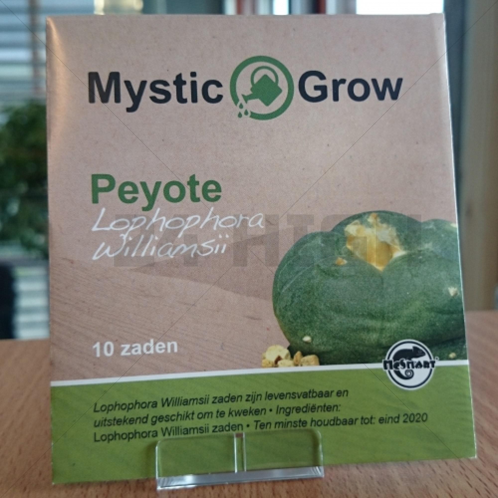 Peyote seeds                      (Lophophora Williamsii)